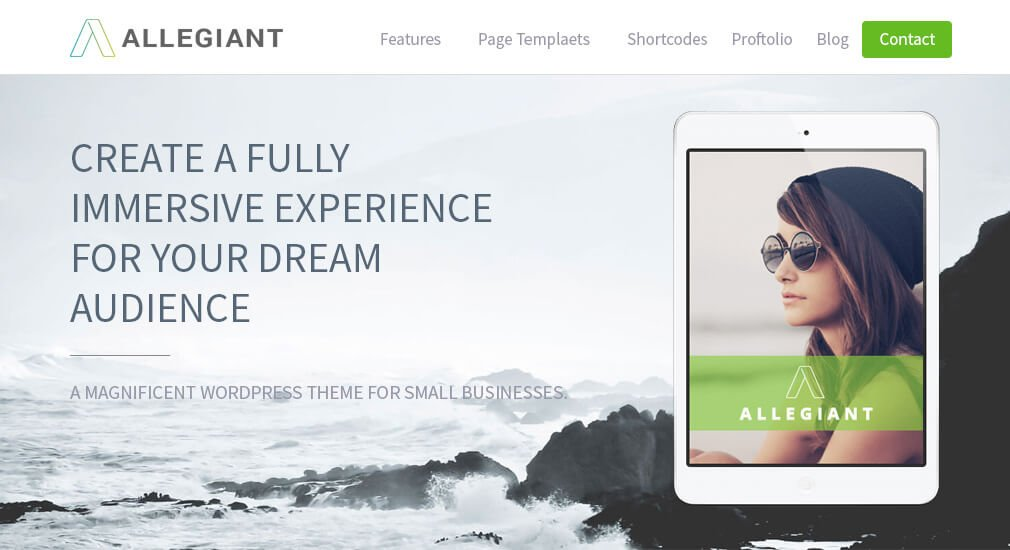 Best WordPress Themes - Allegiant Theme