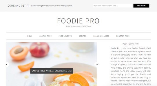 Best WordPress Themes - Foodie Pro Theme