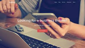 Best WordPress Themes - Sydney Theme